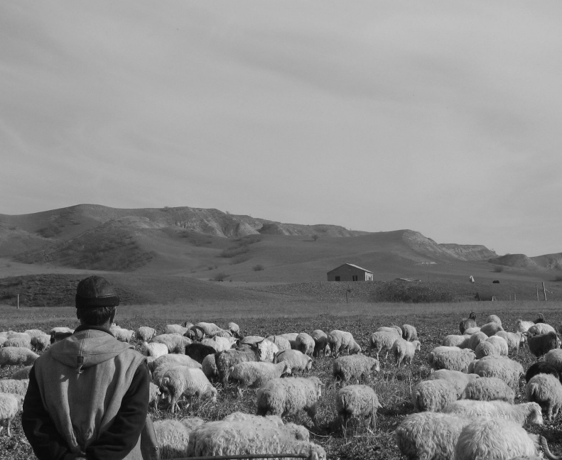 """Field research. 2007. @Florian Mulfried ""."
